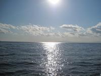 ファミリーホール鶴ヶ峰の海洋散骨、寄港風景