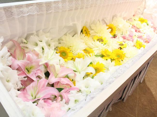 ファミリーホール鶴ヶ峰、花いっぱい火葬プラン209,000円